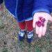 春の散策としおり作りをしました♪|ボーイスカウト西尾第2団ビーバー隊